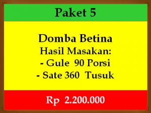 betina-p5