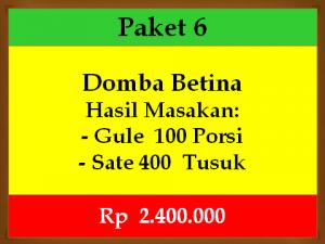 betina-p6